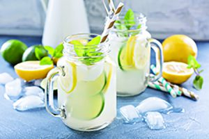 Lemonade at Bucks County Garden Party