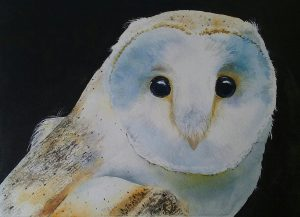 White Owl Watercolor